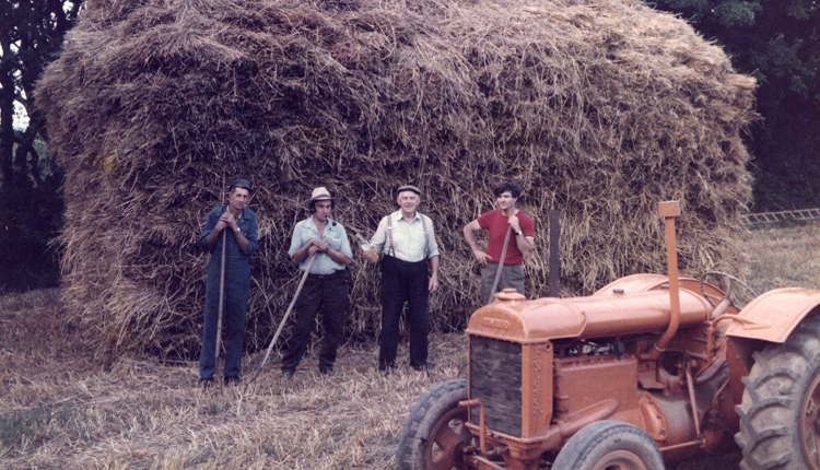 Farm workers in front of a hayrick, resting with their tools, orange tractor in the foreground